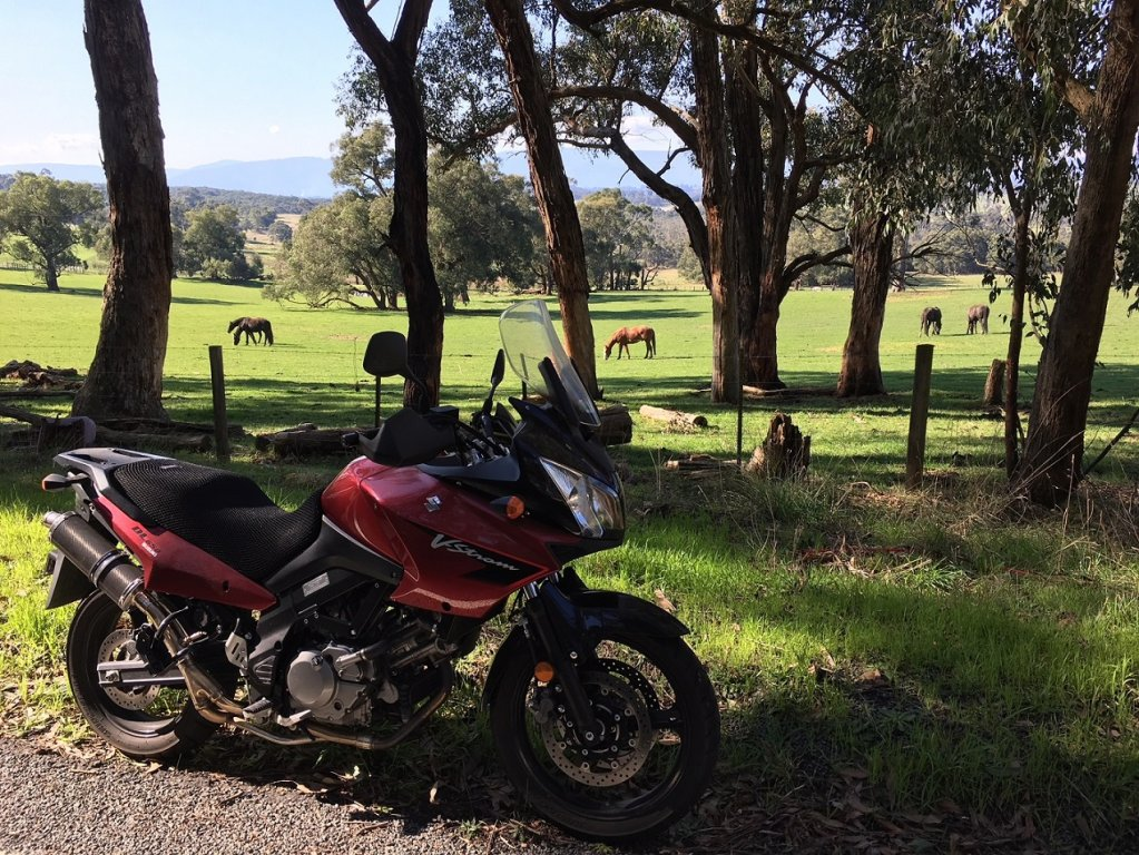 VStrom nice day for a ride Aug 2018.jpg